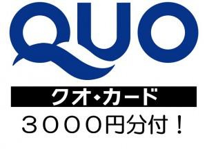 QUO3000円画像